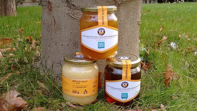 Salviamo le api di Bee My Future