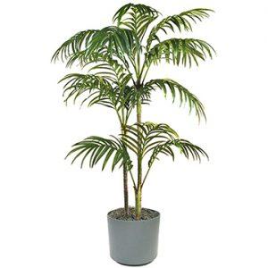 È l'ideale per ambienti in cui si soggiorna per molte ore, per la sua efficacia nel purificare l'aria