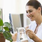 10 piante ornamentali antismog per l'ufficio e la casa