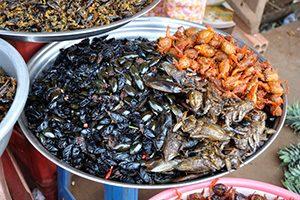 Fritto misto di formiche giganti, scorpioni e cavallette, servito con spicchi di limone e timo.