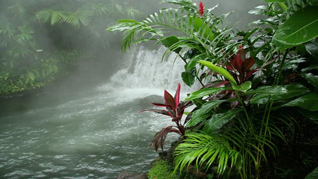 Costa Rica, quando la tutela ambientale paga