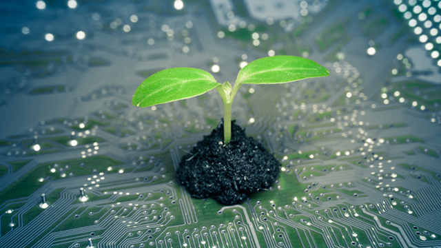 Informatica ecosostenibile riduce impatto ambientale