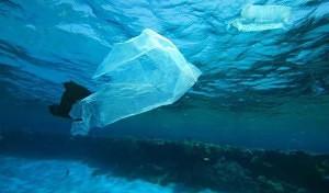 Nuova tassa sui sacchetti di plastica che inquinano il mare