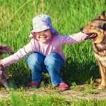 Sei più felice se hai un cane o un gatto?