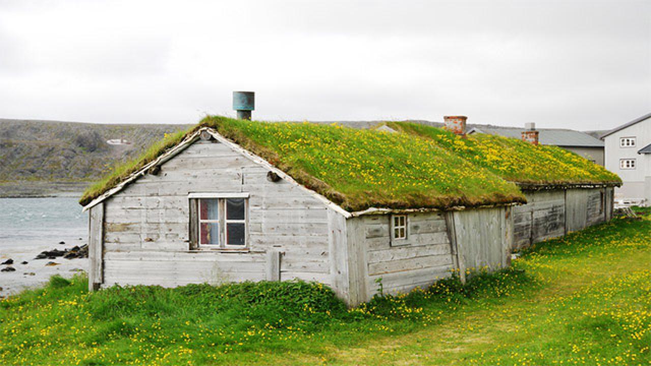 Come Realizzare Un Tetto Economico tetti verdi: cosa sono e come si realizzano