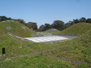 Accademia della california, tetto verde