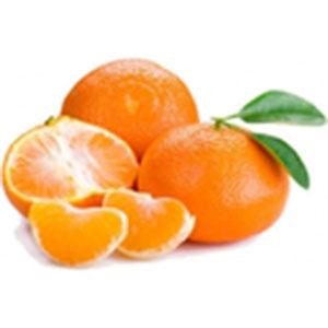 mandarancio frutta di stagione