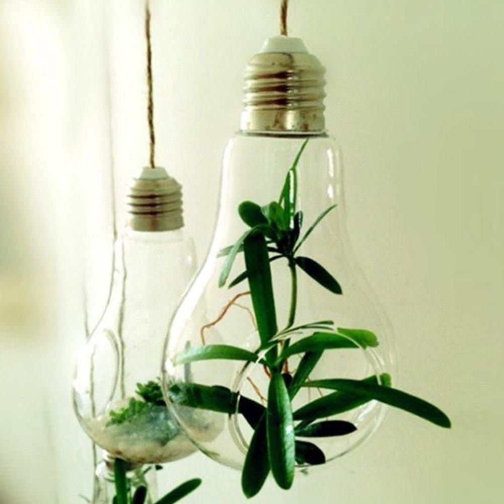 Porta piante da interno sospeso in vetro - Porta piante da interno ...