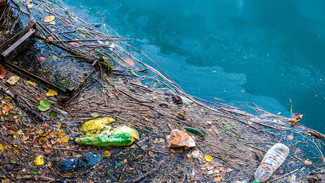 Seabin, una soluzione contro l'inquinamento marino