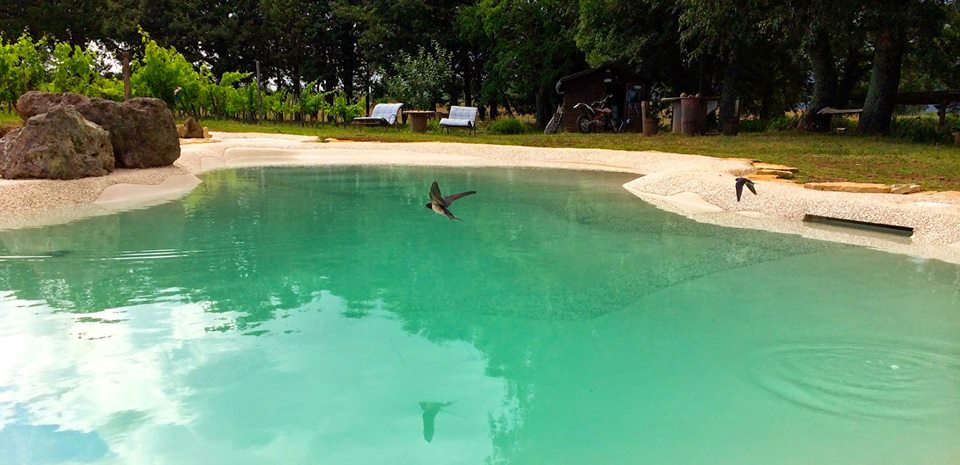 bio piscina sant'egle agriturismo
