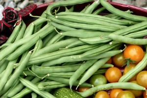 Fagiolini Verdura di Stagione di Aprile