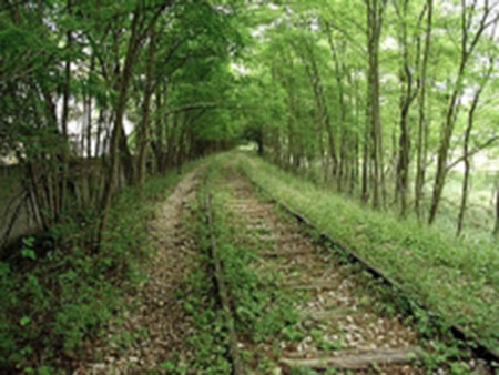 dalle ferrovie abbandonate alle greenways