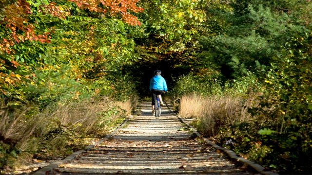 Greenways: ferrovie abbandonate trasformate in piste ciclabili per promuovere il turismo sostenibile
