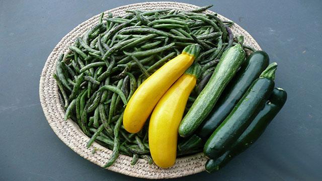 Zucchine e Fagiolini verdura di stagione mese di Aprile