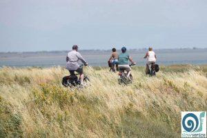 bicicletta mare e cultura in vacanza nella laguna di venezia