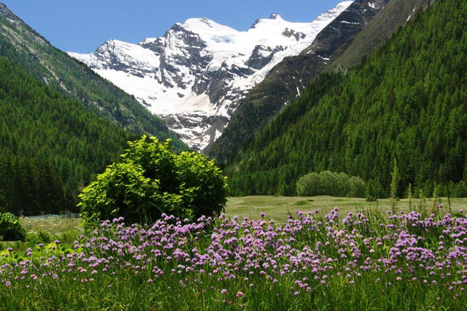 Sweet mountains la rete del turismo responsabile sulle alpi