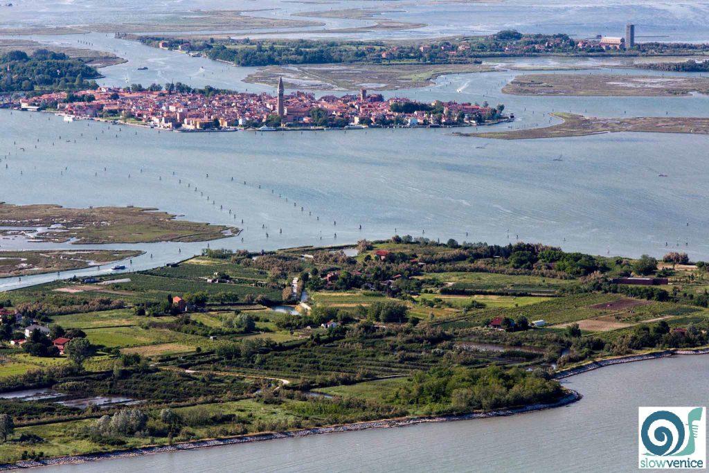 vacanze a venezia tra natura e bicicletta per tutti