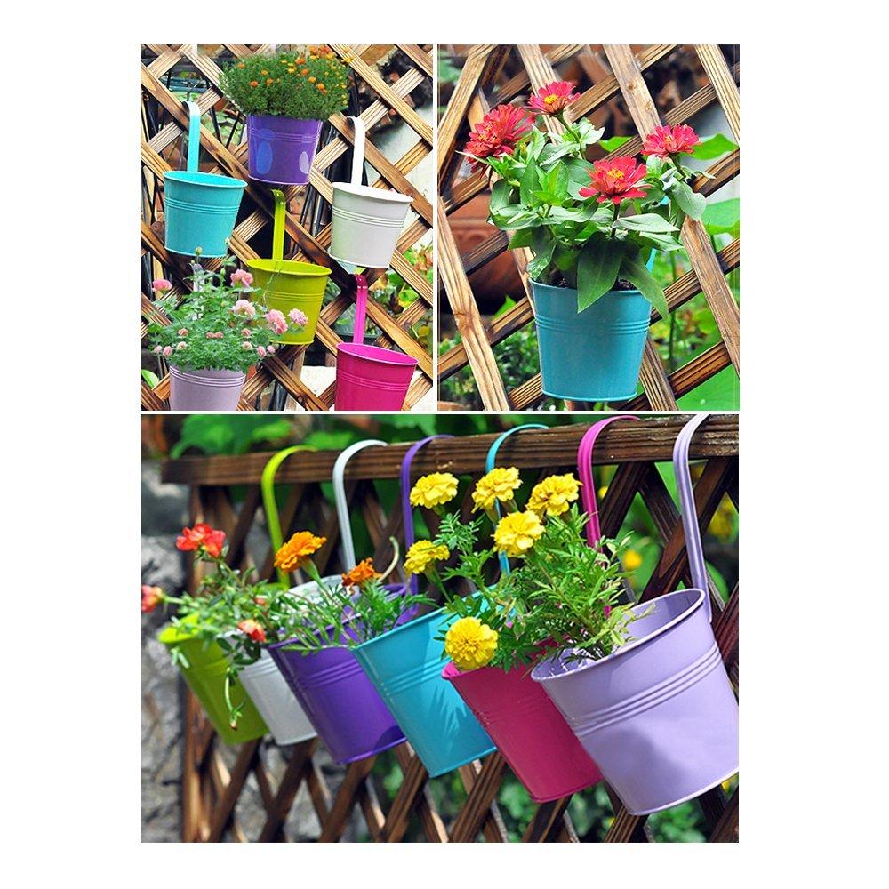 Vasi per fiori da balcone for Fiori primaverili da balcone