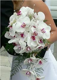 orchidee fiori di stagione invernali per bouquet da sposa