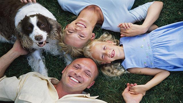 consigli e destinazioni migliore per la tua vacanza con il cane