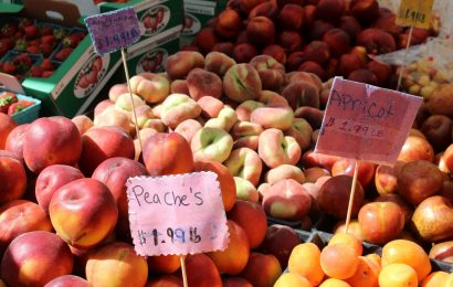 frutta di stagione del mese di giugno