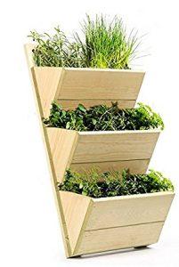 kit coltivazione erbe aromatiche