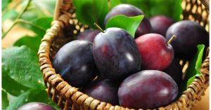 susine frutta di stagione del mese di giugno