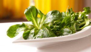 insalata estiva songino, verdure di stagione luglio