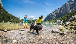 vacanze con il cane in montagna