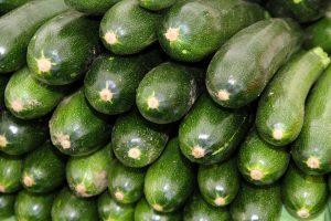 zucchine verdura di stagione di giugno