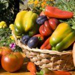 La verdura di stagione di agosto: usi e proprietà
