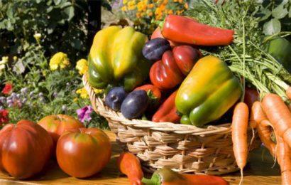 verdura di stagione agosto usi e proprietà
