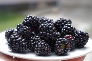 more frutta di stagione di agosto