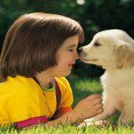 Pet Therapy: dalle spiagge Italiane alle aule Australiane