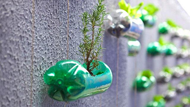 10 idee di riciclo creativo delle bottiglie di plastica