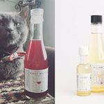 Vino per gatti: un brindisi con i nostri amici felini