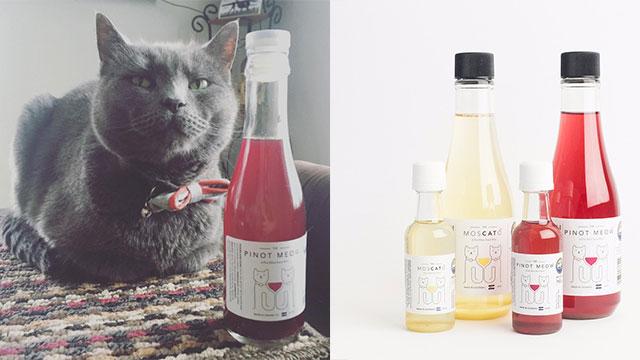 vino per gatti un brindisi insieme ai vostri amici felini