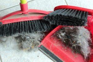 10 materiali difficili da riciclare pelo di gatto