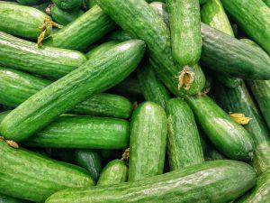cetrioli verdura di stagione settembre
