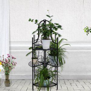 10 piante da balcone sempreverdi