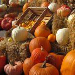 La verdura di stagione di ottobre
