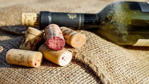 vino biologico, caratteristiche, come si produce e dove si compra