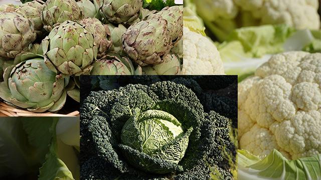 verdura di stagione di novembre: cavolo, carciofo, cavolfiore