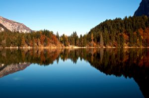 autunno al lago di tovel per ammirare il foliage