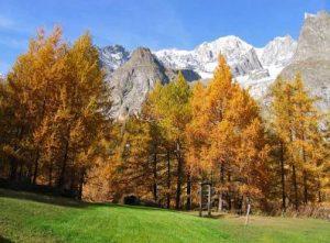 fenomeno del foliage in valle d'aosta
