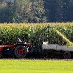 Agricoltura biologica: 10 regole per una produzione di successo