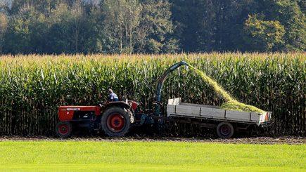 agricoltura biologica come si pratica