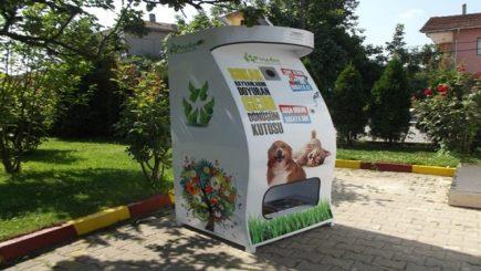 cibo per gatti e cani abbandonati