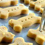 Biscotti per cani alla farina di riso con parmigiano e carote