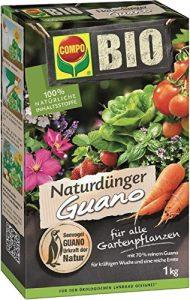 fertilizzante naturale per aiuola